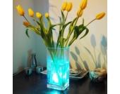 Unterwasser-Leuchte Aqua Mood Light